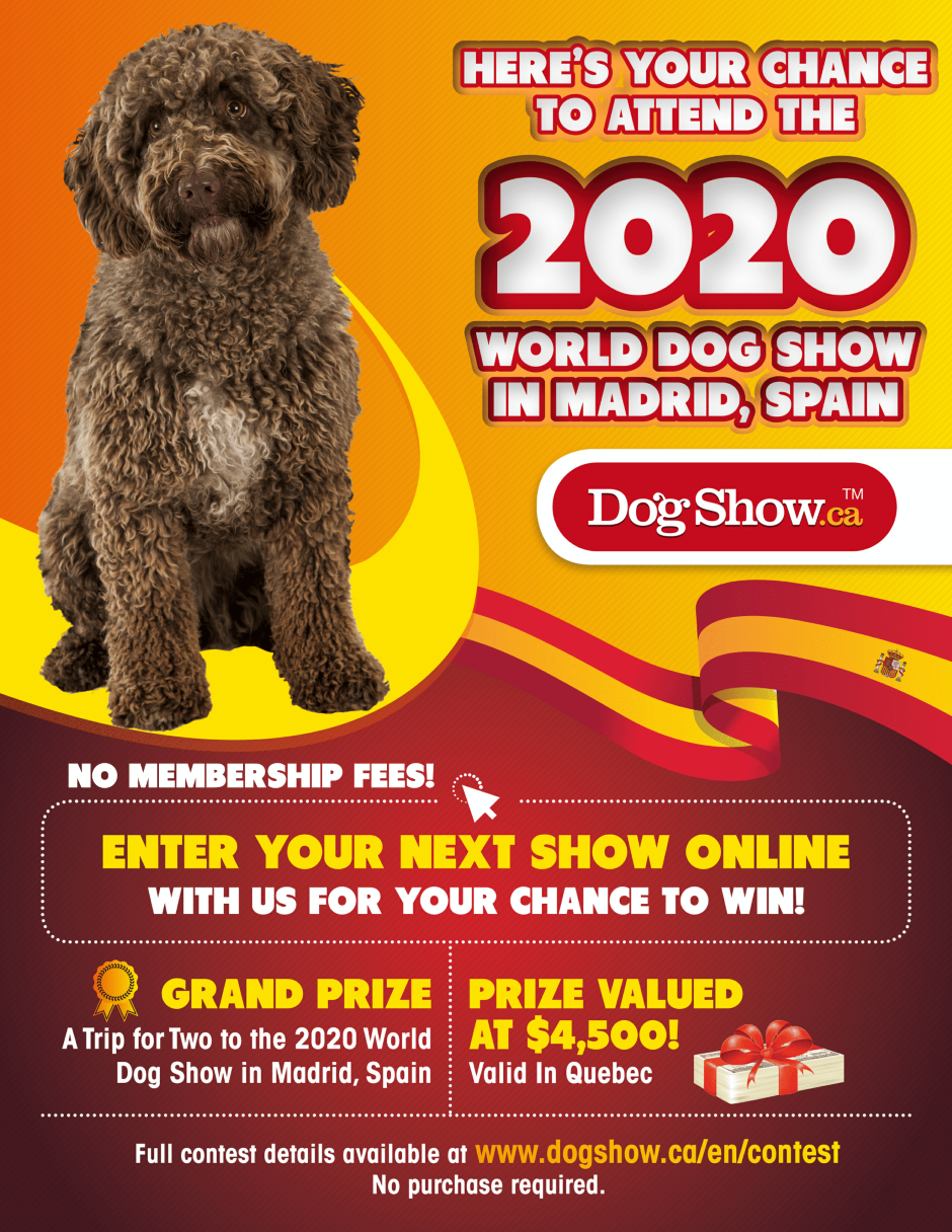Win a trip for two to the World Dog Show 2020