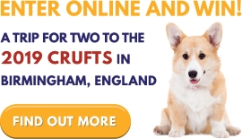 Win a Trip to the 2019 Crufts!