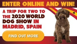 Win a Trip to the World Dog Show 2020!